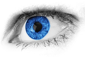 blue-eye-detail-3426x2283_14031